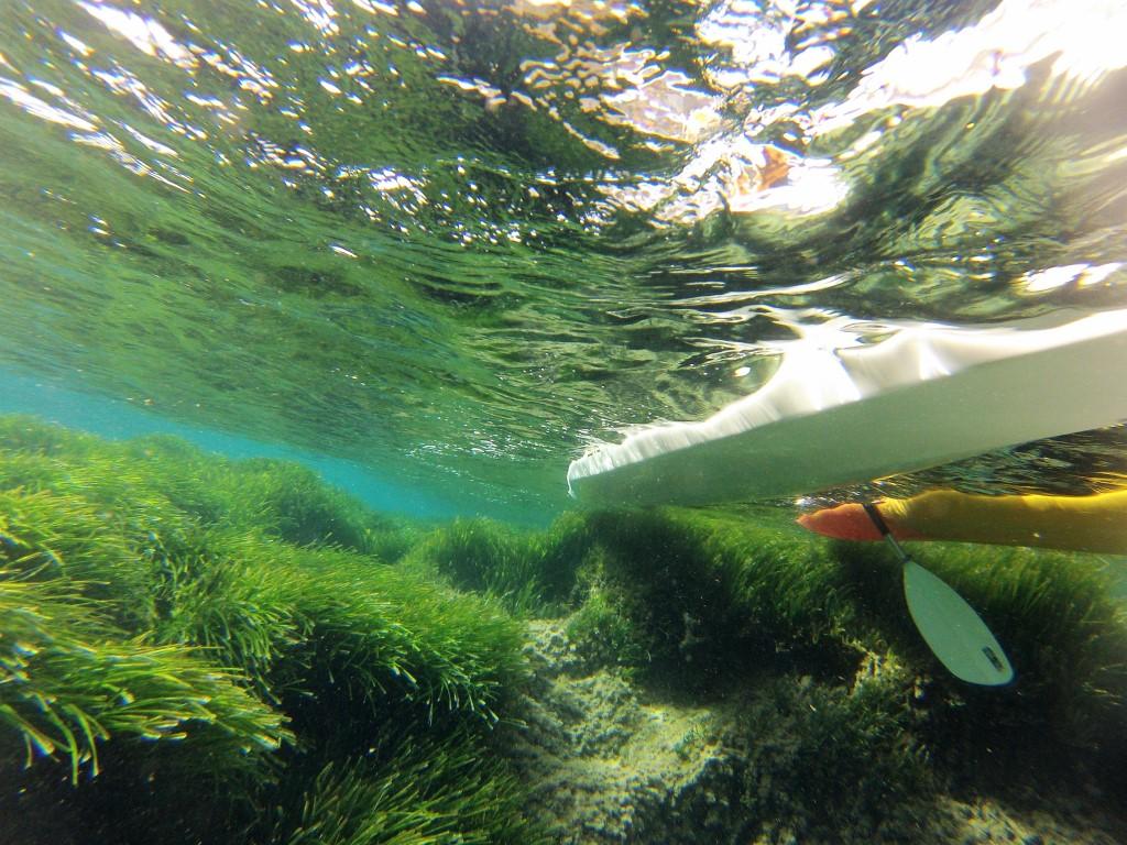 HETibiza kayak+posidonia