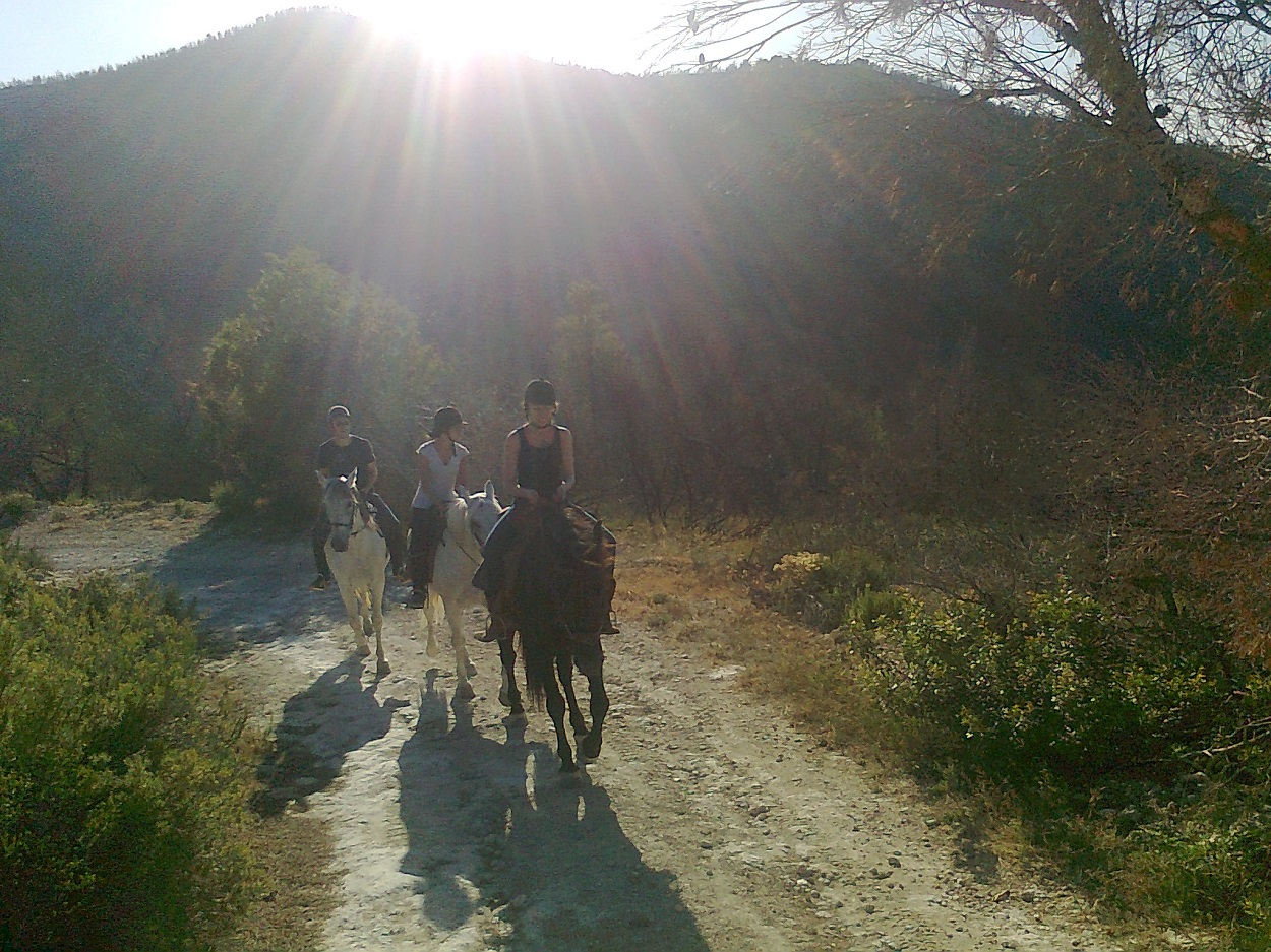 HETibiza paardrijden