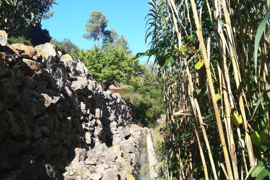 Hike Buscatell, HETibiza