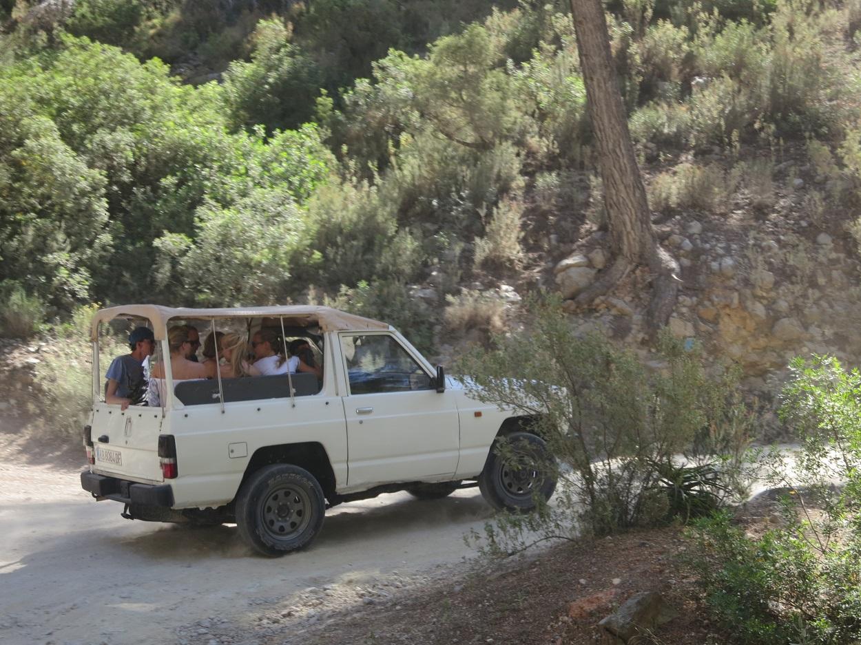 HETibiza Jeepsafari Ibiza pijnbomen
