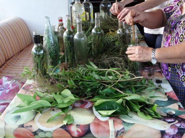 HETibiza Hierbas Ibicencas kruiden