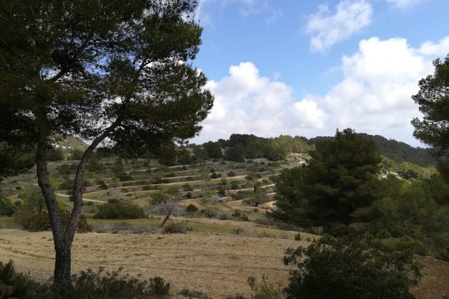 Hike Sa Talaia | HETibiza